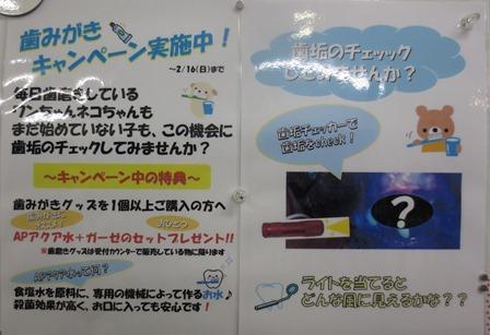 歯磨きキャンペーンポスターburogu