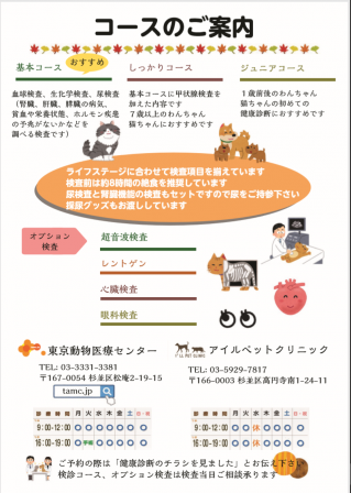 ブログ用秋キャン裏
